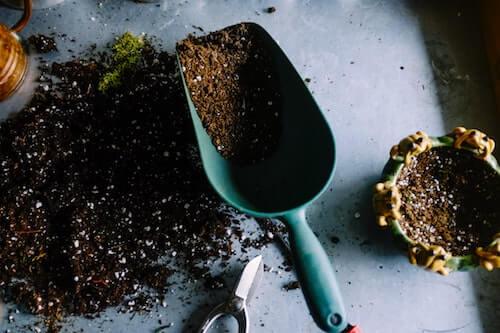 pelle avec du compost